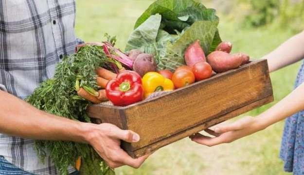 Photo de l'actualité EPIVAL : L'accès à une alimentation saine, nutritve et locale